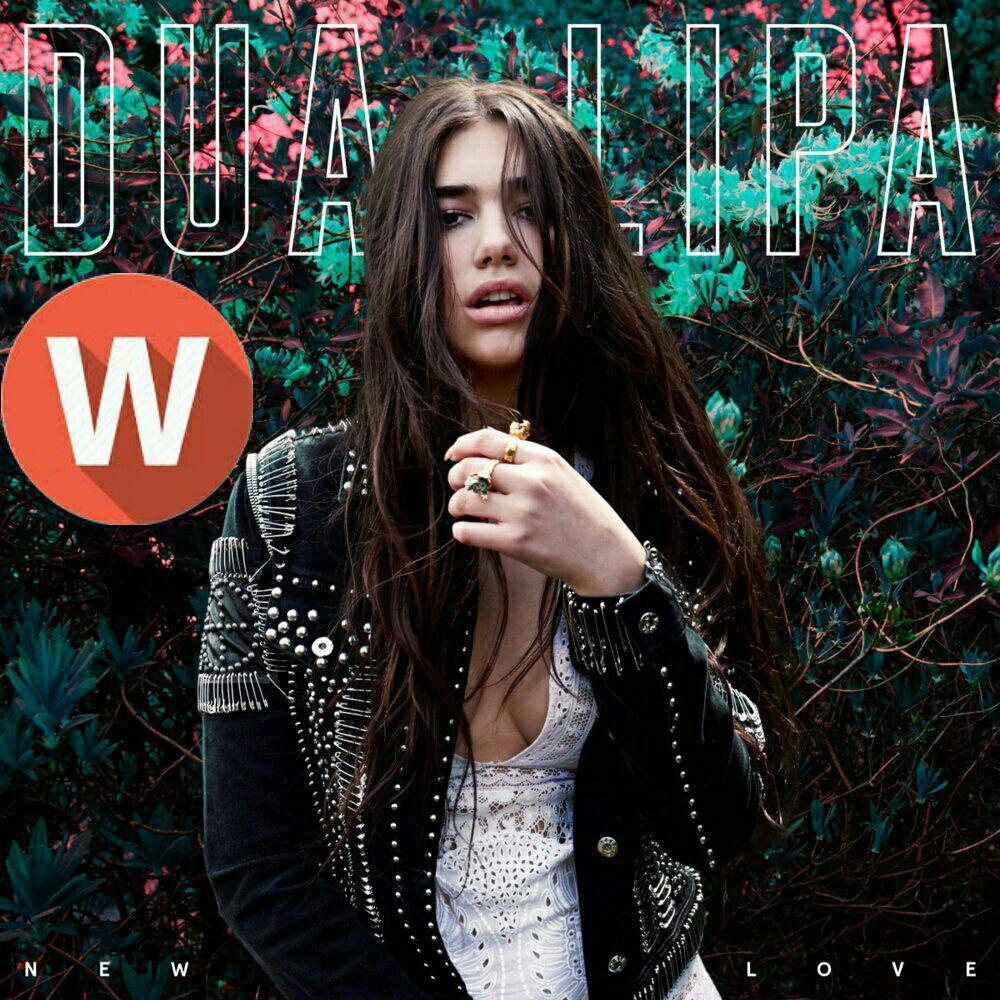 Download MusicDua Lipa– New Love