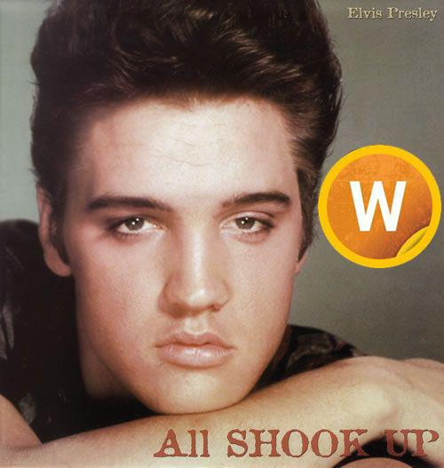 Download Music Elvis Presley – All Shook Up